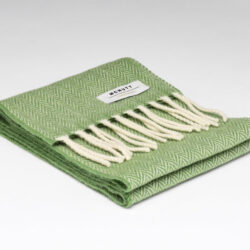 Lambswool Child's Scarf - Green