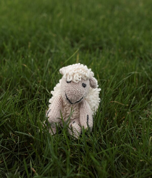 Shepley the Handknit Sheep - Natural & Oatmeal